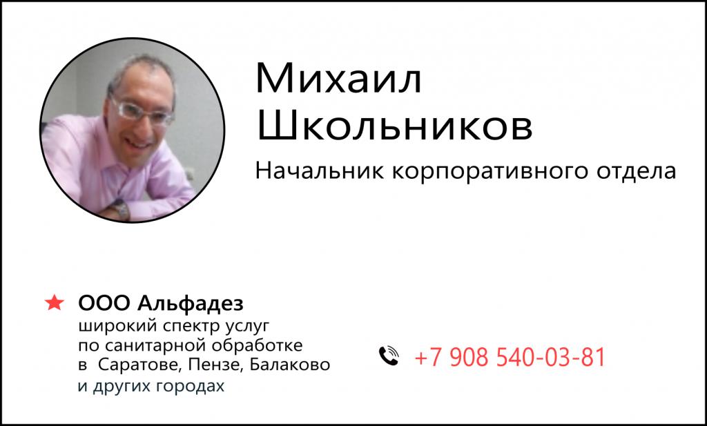 viz_shkolnikov