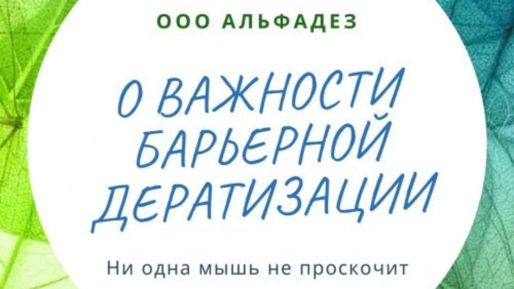 alfadez_saratov_72709952_550223602480560_7519277112237303035_n(1)